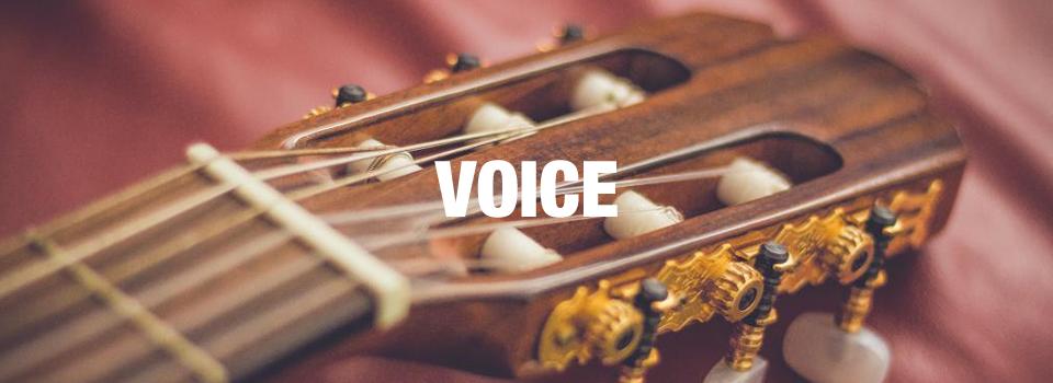 voice_main